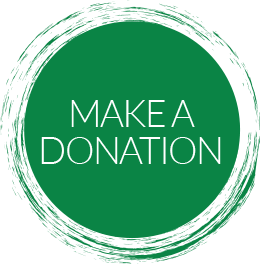 Image result for green donate images